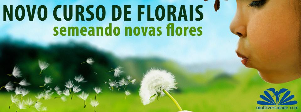 curso de florais de bach